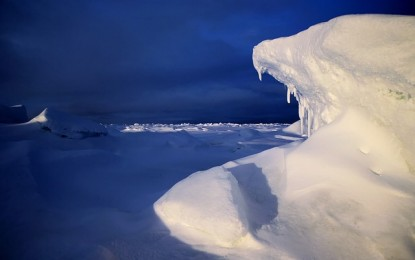 O excursie in Antarctica