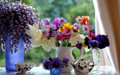 Florile si seminificatiile lor