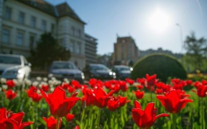 Ce evenimente ne asteapta in aceasta primavara in Romania?