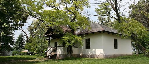 5 locuri de vizitat in Botosani
