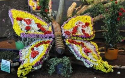 ExpoFlora – Flori la malul Dunarii